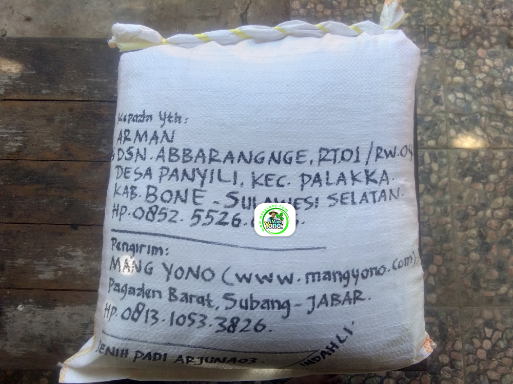 Benih Padi yang dibeli   ARMAN Bone, Sulawesi Selatan.   (Setelah packing karung).