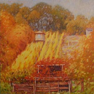 Сельские и городские пейзажи. Richard Mierniczak