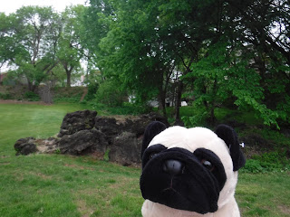 a large, dark lumpy pile of coal cinders is visible behind a plush pug
