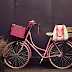 Bicicleta Rosa [PARTE 2]