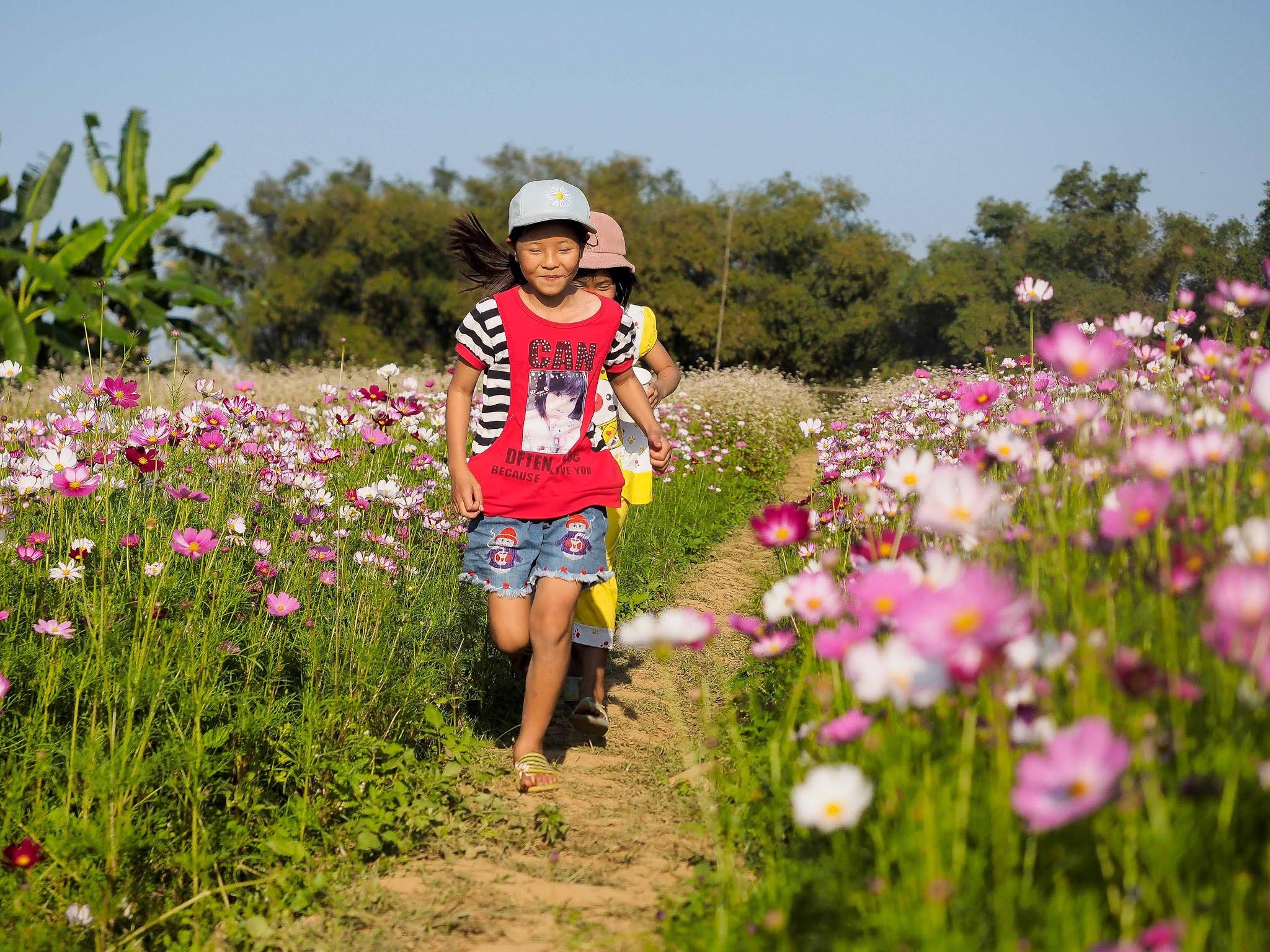 Nông trại ven sông Điện Phương, địa điểm chụp ảnh không thể bỏ lỡ khi đến Hội An