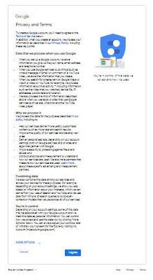 GooglePrivacy.jpg