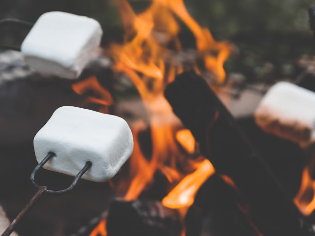 Marshmallows Campfire