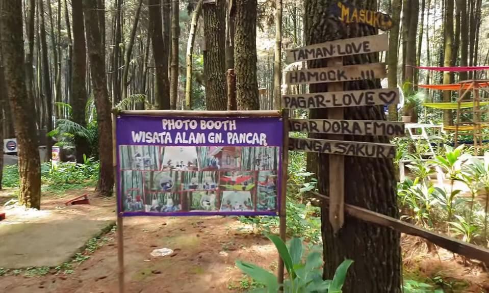 harga tiket masuk hutan pinus bogor