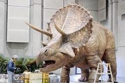 やまなし大恐竜博開催