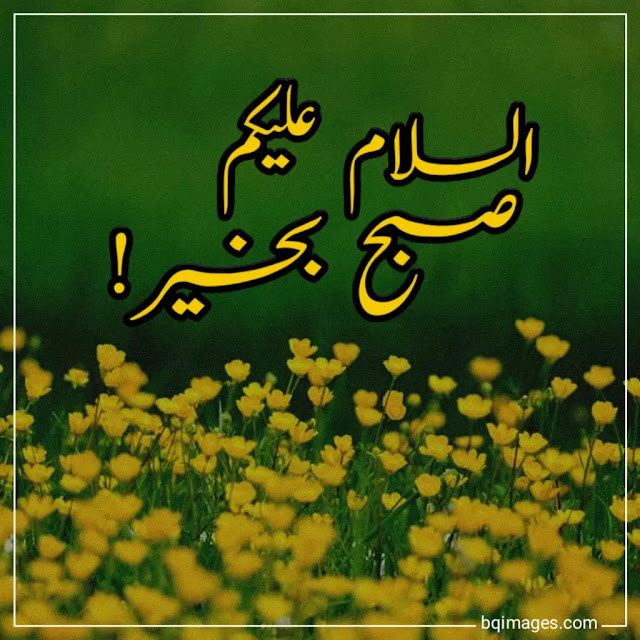good morning pics in urdu
