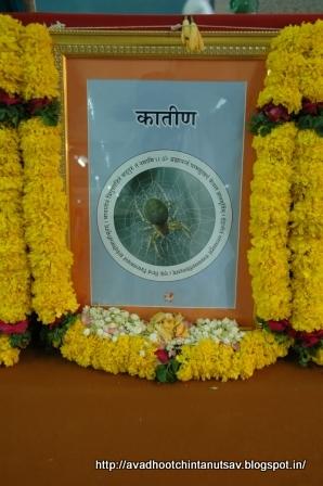 24 gurus of Dattatreya, positive energy, Avdhoot, Mahavishnu, Lord Shiva, Dattaguru, secure path, Shree Harigurugram, Avdhootchintan, spider
