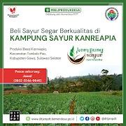 Kementrian Desa Bantu Promosikan Jual Sayur Online Rumah Koran