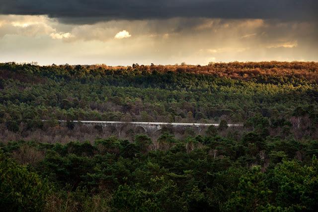 Sentier du Long Boyau, forêt de Fontainebleau, Point de vue de la Bombarde.