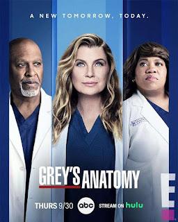 Greys Anatomy Temporada 18 capitulo capitulo 4