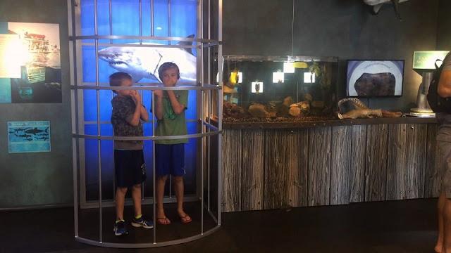 Sobre Santa Bárbara Maritime Museum