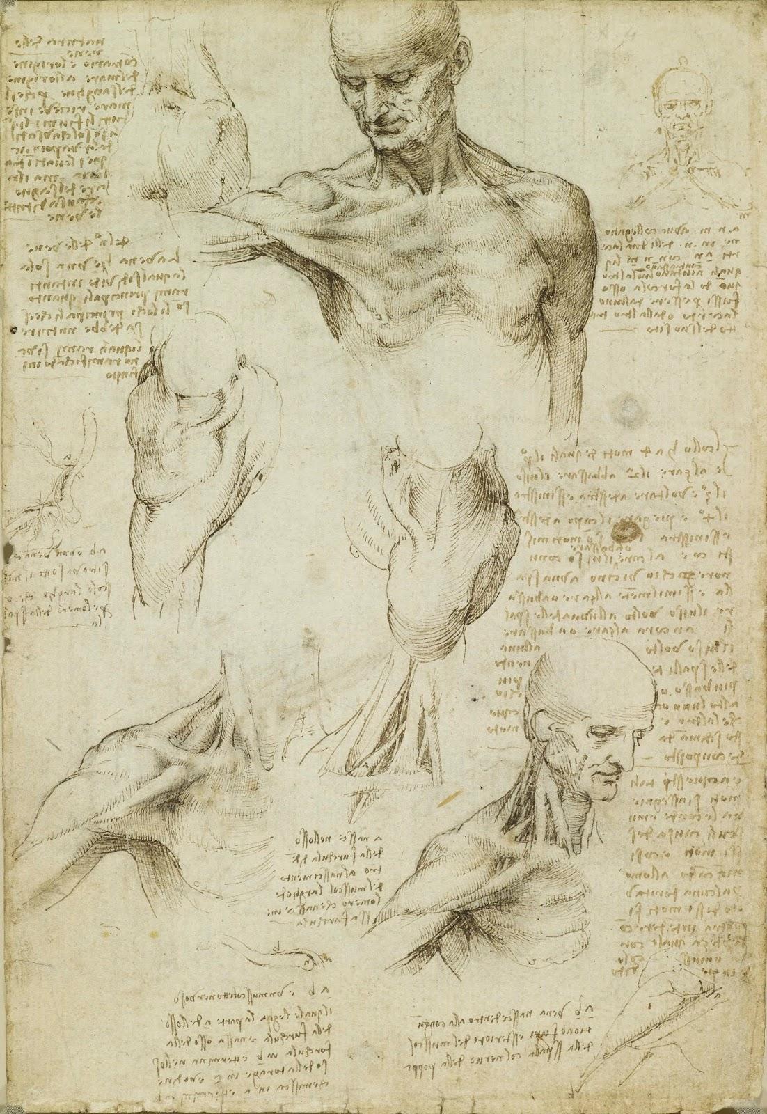 News - The Renaissance Nude | AlbieMedia