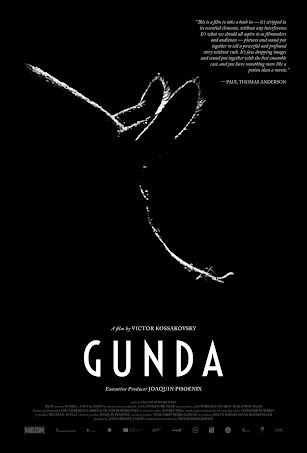 Gunda: An Emotional Journey of Pigs, Chickens, and Cows