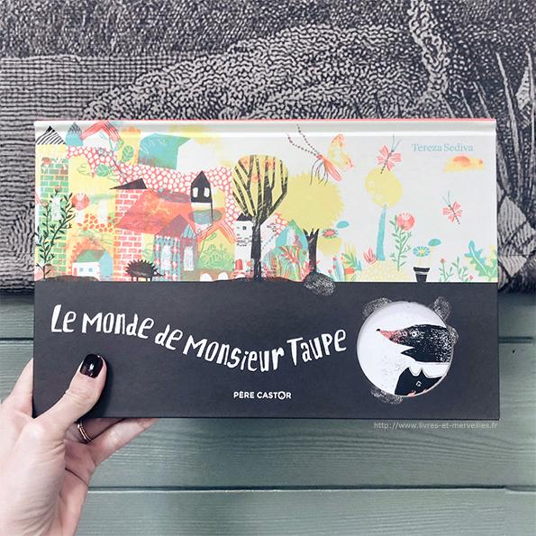 Album jeunesse : Le monde de monsieur Taupe