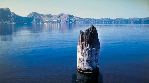 A mysterious floating upright log on the lake for 120 years