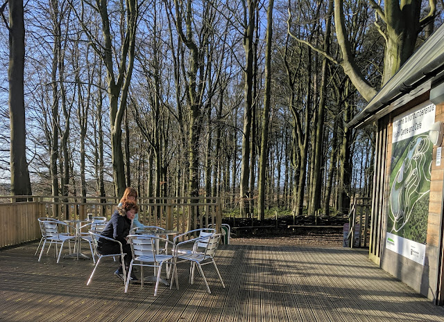 A Guide to Visiting Northumberlandia - cafe outdoor seating