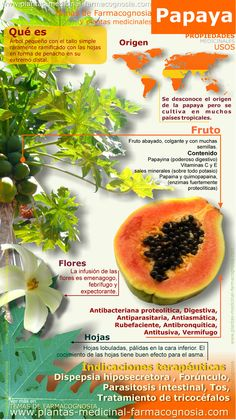 SEMILLAS / PEPITAS DE PAPAYA