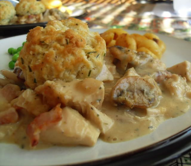 CHICKEN AND MUSHROOM CASSEROLE WITH CRUSTY DUMPLINGS