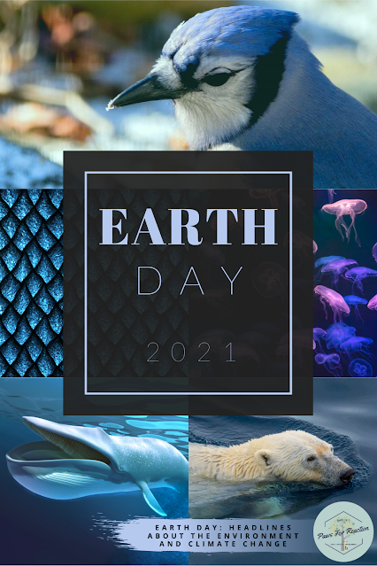 Sustainable stories: Environmental headlines for Earth Day