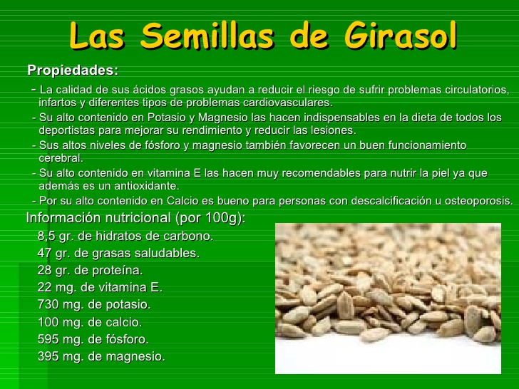 semilla de girasol caracteristicas