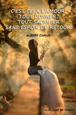 http://lachroniquedespassions.blogspot.fr/2016/07/la-selection-du-mois-juillet-2016.html
