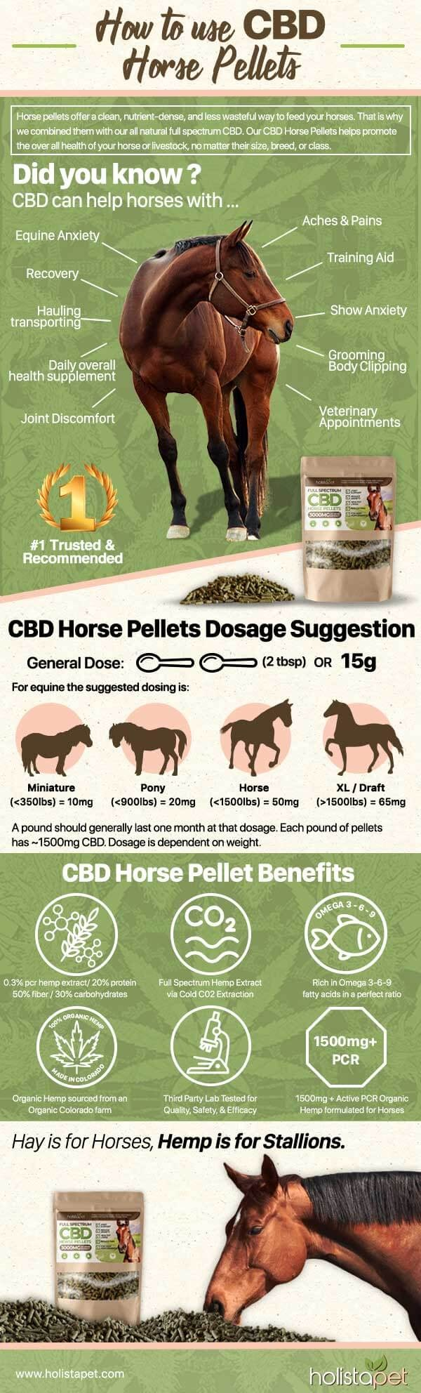 CBD Pellets for Horses - 3000mg | Hemp Pellets for Horses #infographic