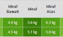 Berapa Standar Berat Badan,Tinggi dan Lingkar Kepala Bayi Usia 2 Bulan ???