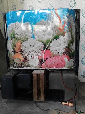 cara buat tv jadi aquarium