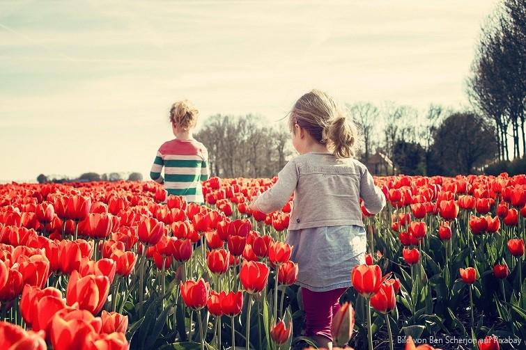 Gartendeko im Frühling