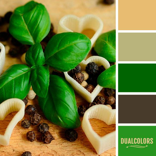 color_paleta_56