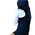 100+ Girls Png Download | Girls PNG for PicsArt editing | HD CB Girls Png Zip File Download