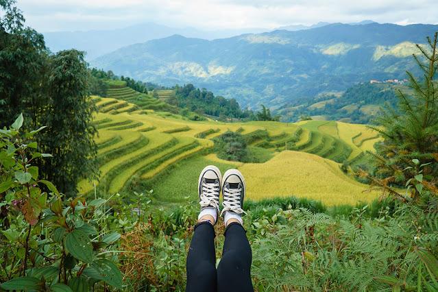 Hoàng Su Phì – Nơi những thửa ruộng bậc thang vàng rực tuyệt đẹp