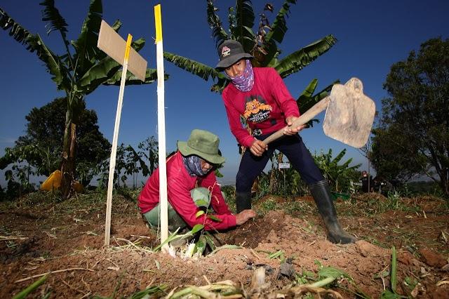 Yana Bersama Satgas Citarum Sektor 22 Taman Sebanyak 865 Pohon Di Blok Garung Kanhay