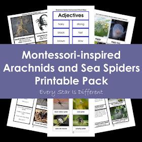 Montessori-inspired Arachnids and Sea Spiders Printable Pack