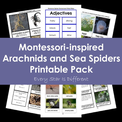 Montessori-inspired Arachnids and Sea Spiders Printable Pack