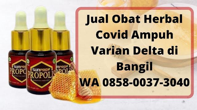 Jual Obat Herbal Covid Ampuh Varian Delta di Bangil WA 0858-0037-3040