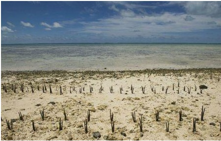 Land Reso urces2 - भूमि संसाधन | Land Resources