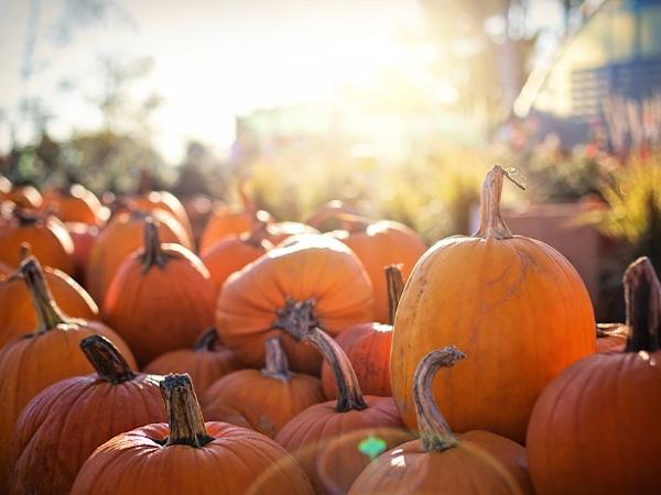 4 Ideas de maquillaje para Halloween vistas en Instagram
