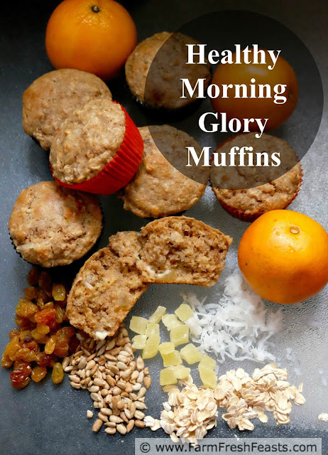 This recipe combines oats, orange juice and raisins with the sweetness of maple syrup plus crunch from coconut and sunflower seeds in a whole grain muffin that is free of refined sugar.