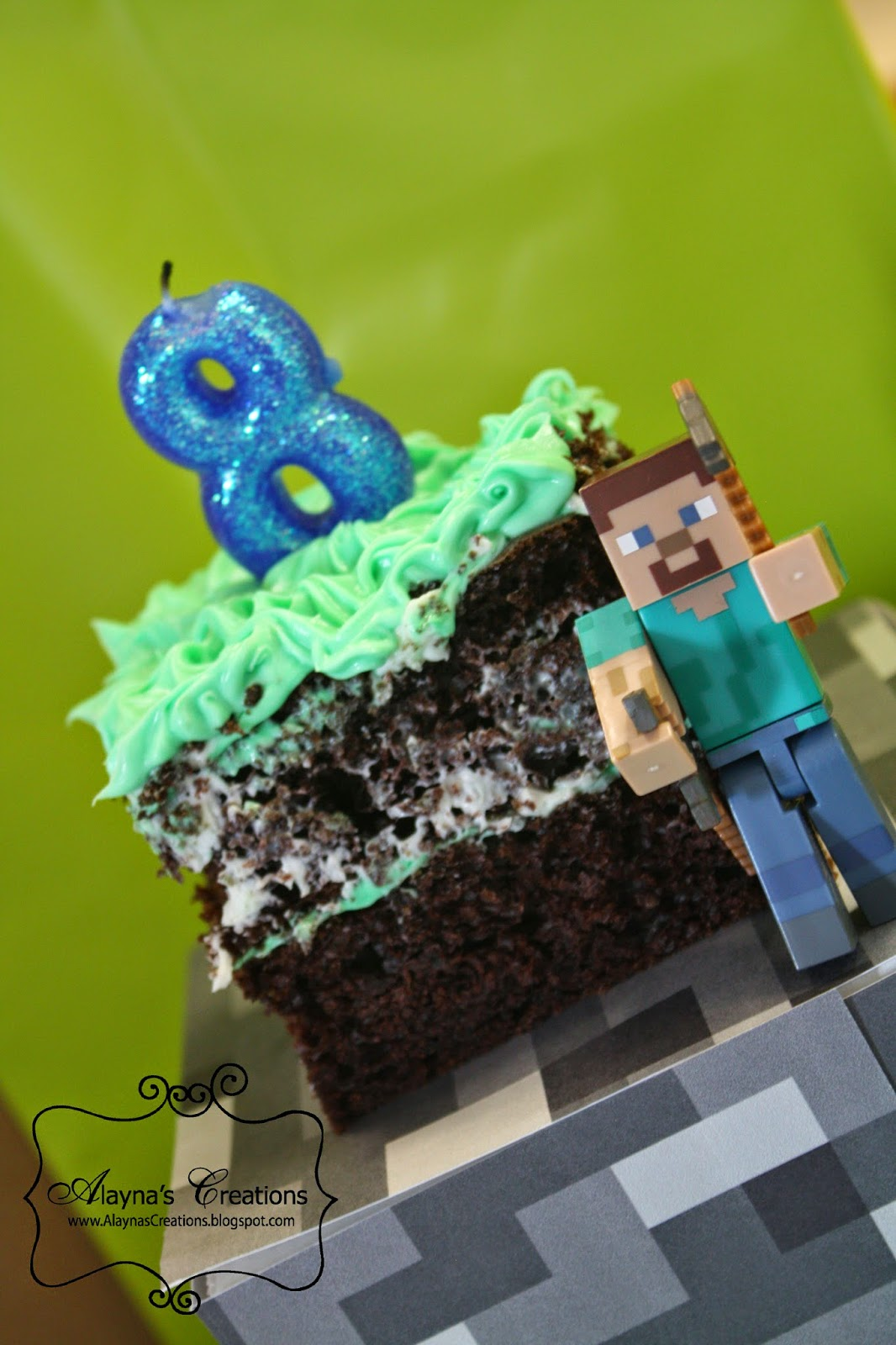 Alayna S Creations Minecraft Birthday Party