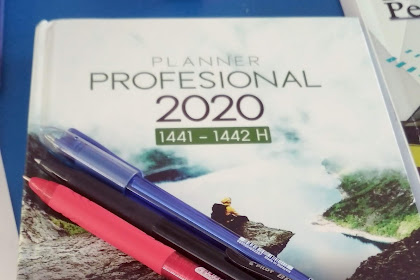 Planner Professional 2020