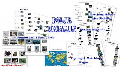 http://homeschoolden.com/2017/01/24/winter-packet-earths-axis-seasons-the-arctic-vs-antarctica-polar-animals-and-more/
