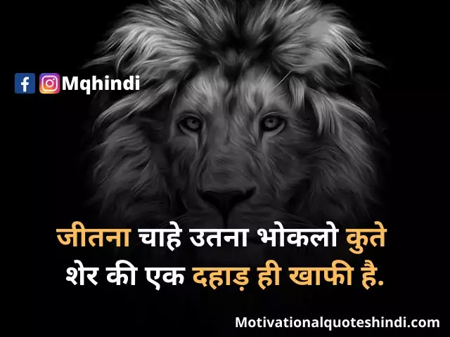 Lion quotes, Morals quotes, Tiger quotes