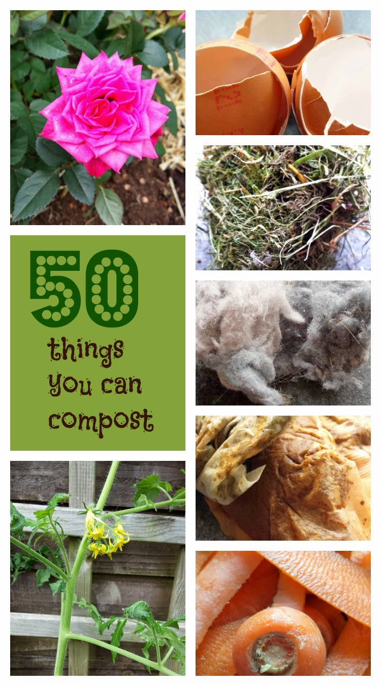 50 things to compost