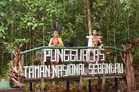 Sejarah Taman Nasional Sebangau