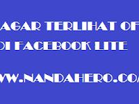 Cara Agar Terlihat Offline di Facebook Lite dengan Mudah