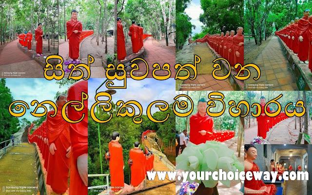 සිත් සුවපත් වන - නෙල්ලිකුලම විහාරය ☸️🙏😇 (Nellikulama Viharaya) - Your Choice Way