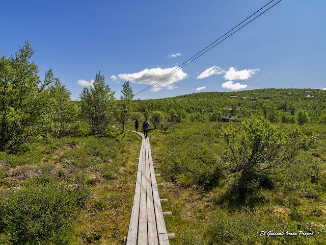 Pasarelas de la Ruta Brudesloret en Rondane - Noruega, por El Guisante Verde Project