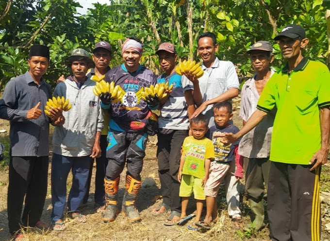 Disela Trabas, Bupati Dompu Sambangi Petani Di Sekitar Mada Oi Kampasi