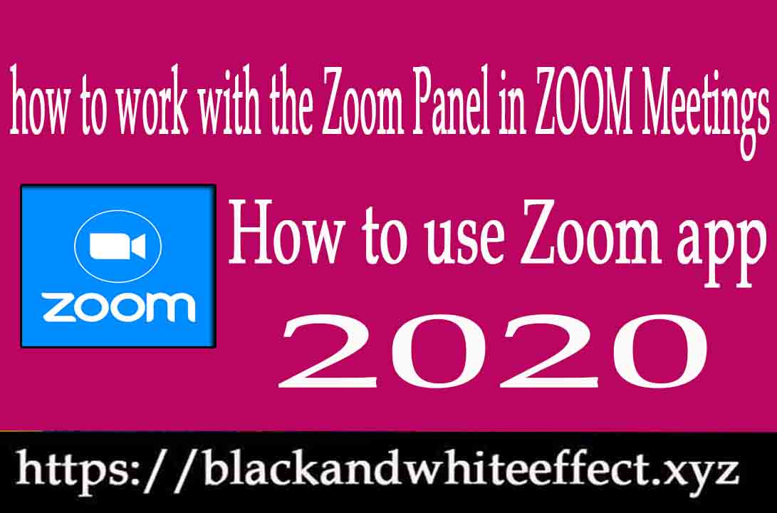 how-to-work-with-zoom-panel-in-zoom